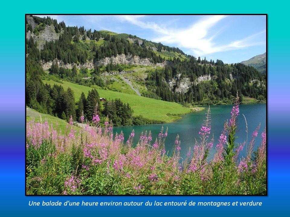 Une balade d'une heure environ autour du lac entouré de montagnes et verdure