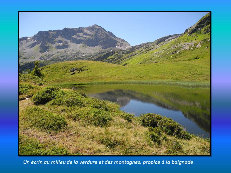 Un écrin au milieu de la verdure et des montagnes, propice à la baignade