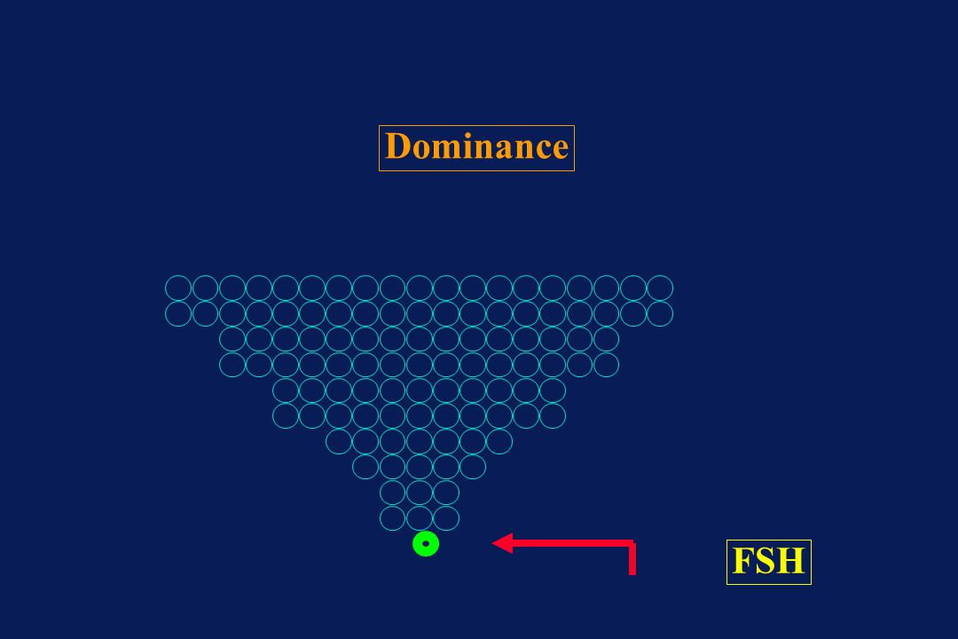 Dominance FSH