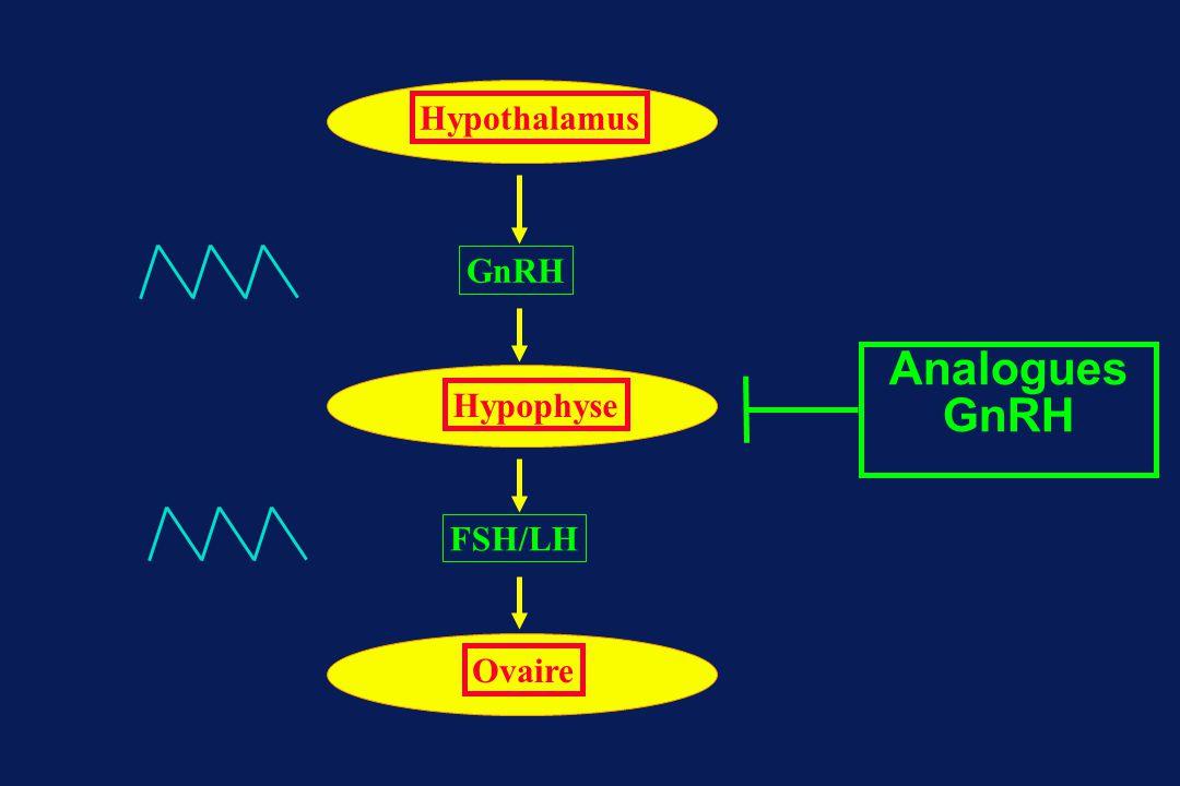 Hypothalamus GnRH Analogues GnRH Hypophyse FSH/LH Ovaire
