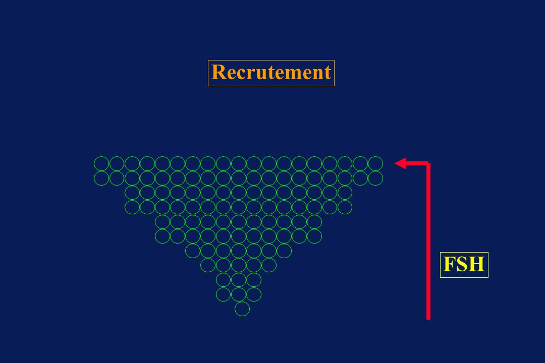 Recrutement FSH