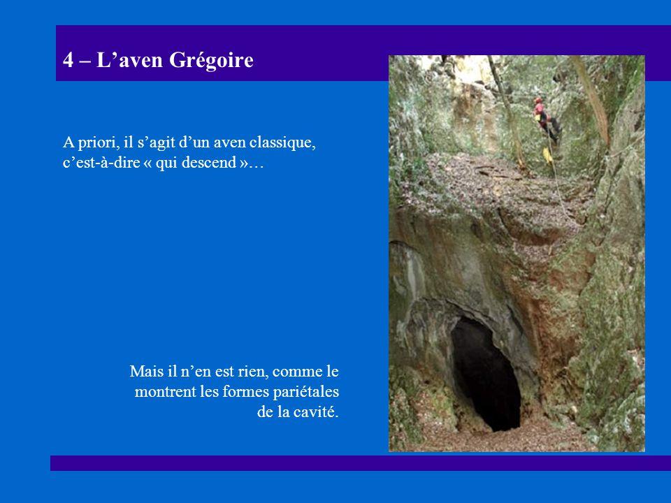4 – L'aven Grégoire A priori, il s'agit d'un aven classique, c'est-à-dire « qui descend »…
