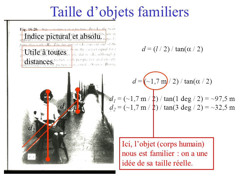 Taille d'objets familiers