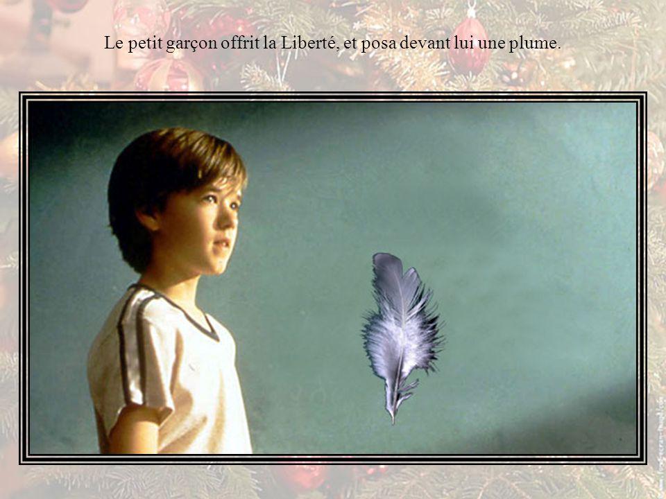 Le petit garçon offrit la Liberté, et posa devant lui une plume.
