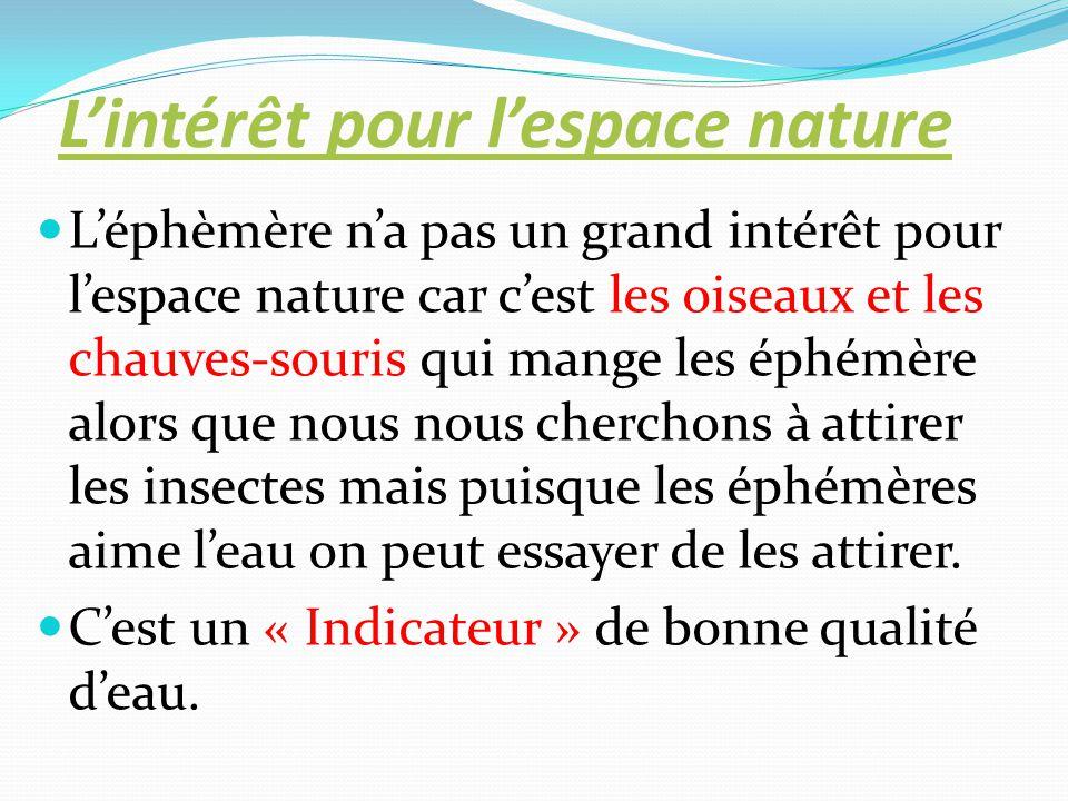 L'intérêt pour l'espace nature