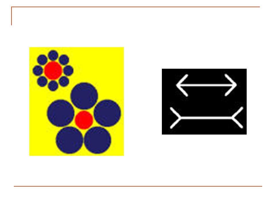 Retour au cours : Illusions d optique et contrastes