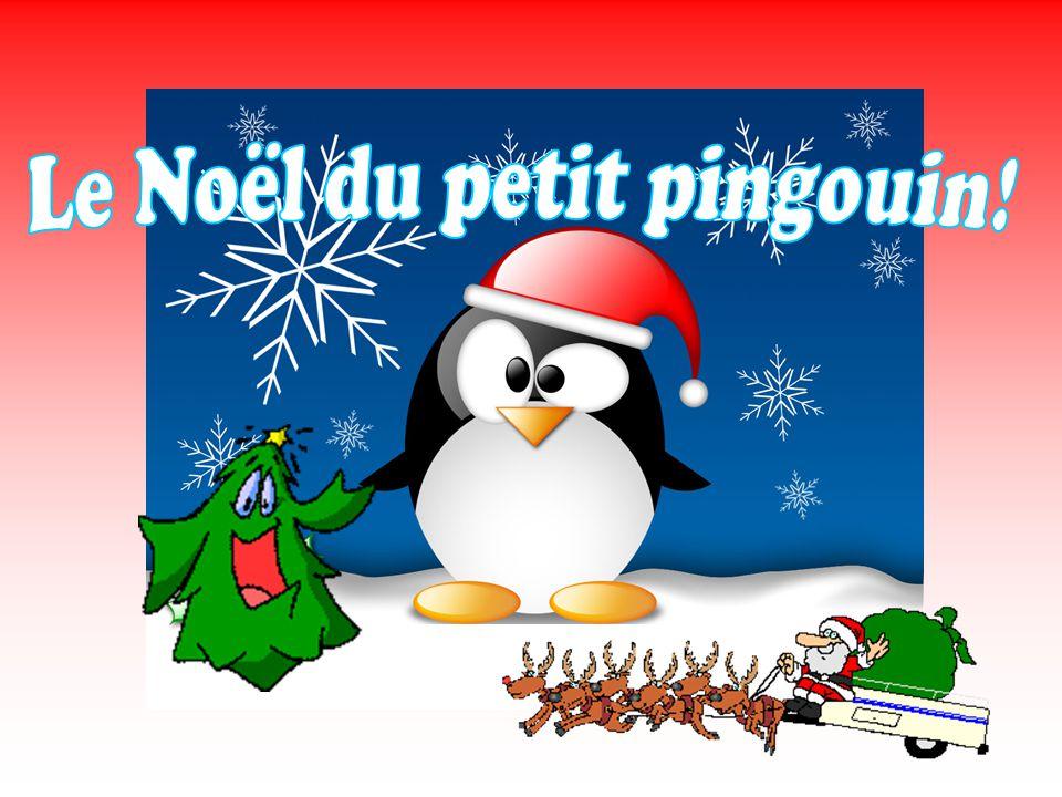 Le Noël du petit pingouin!
