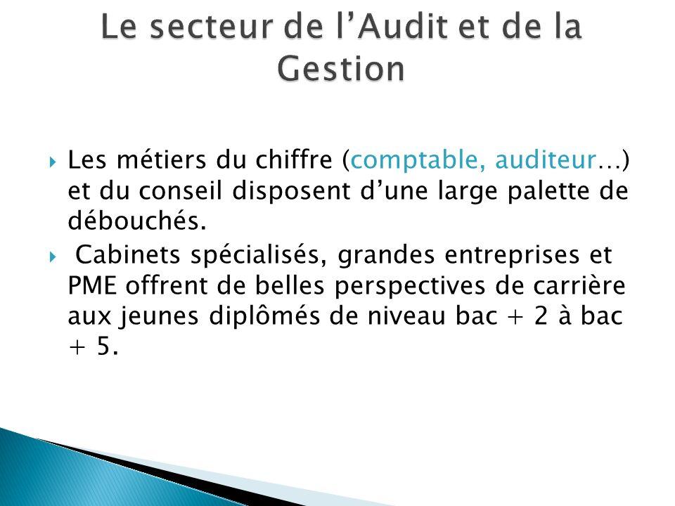 Le secteur de l'Audit et de la Gestion