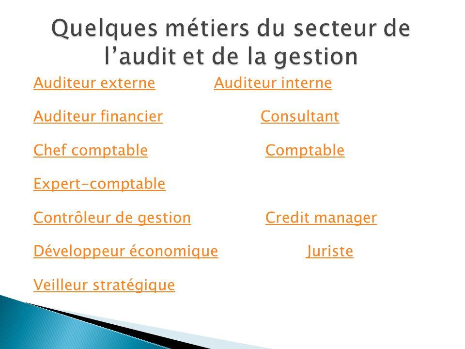 Quelques métiers du secteur de l'audit et de la gestion
