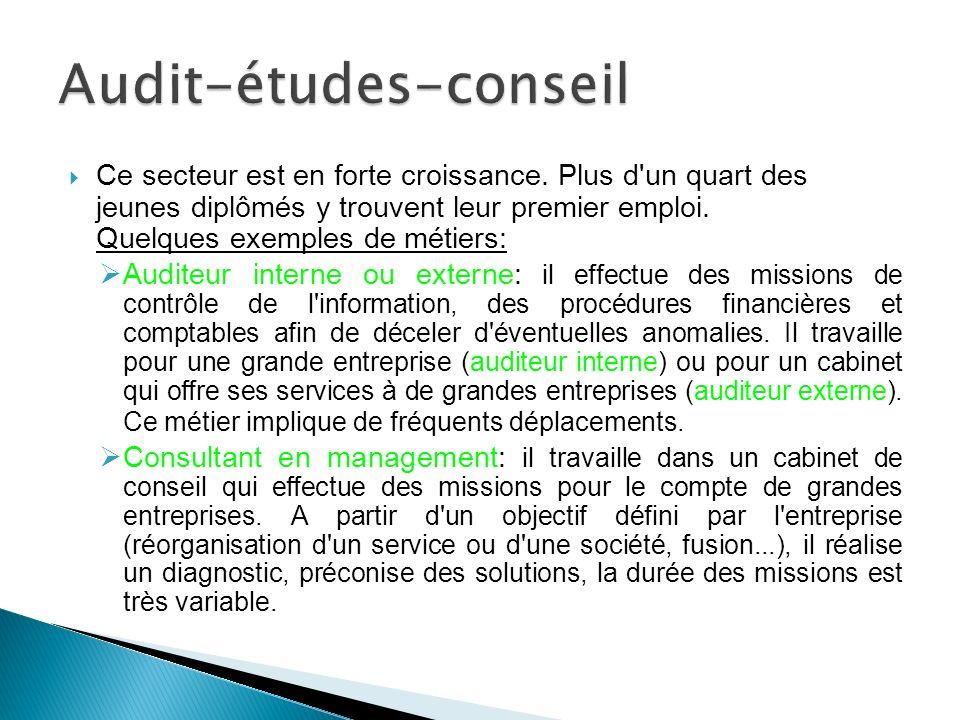 Audit-études-conseil