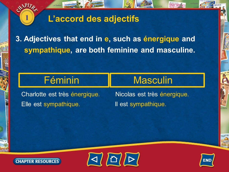 Féminin Masculin L'accord des adjectifs 1