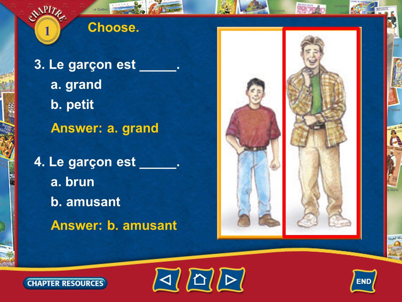 Choose. 1. 3. Le garçon est _____. a. grand. b. petit. Answer: a. grand. 4. Le garçon est _____.