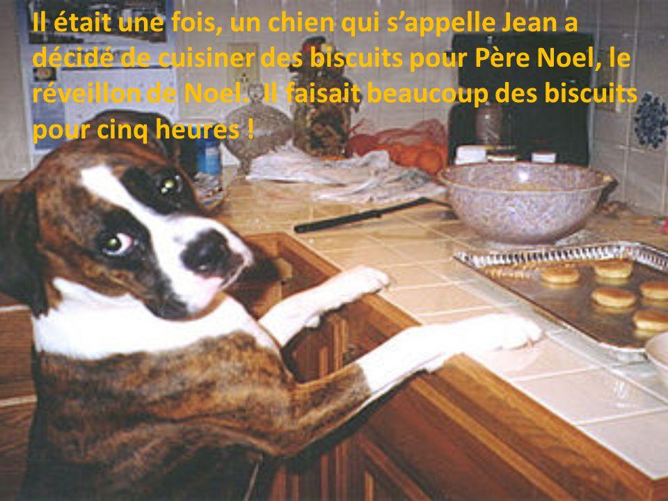 Il était une fois, un chien qui s'appelle Jean a décidé de cuisiner des biscuits pour Père Noel, le réveillon de Noel.