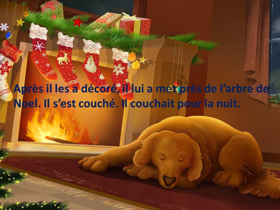 Après il les a décoré, il lui a met près de l'arbre de Noel
