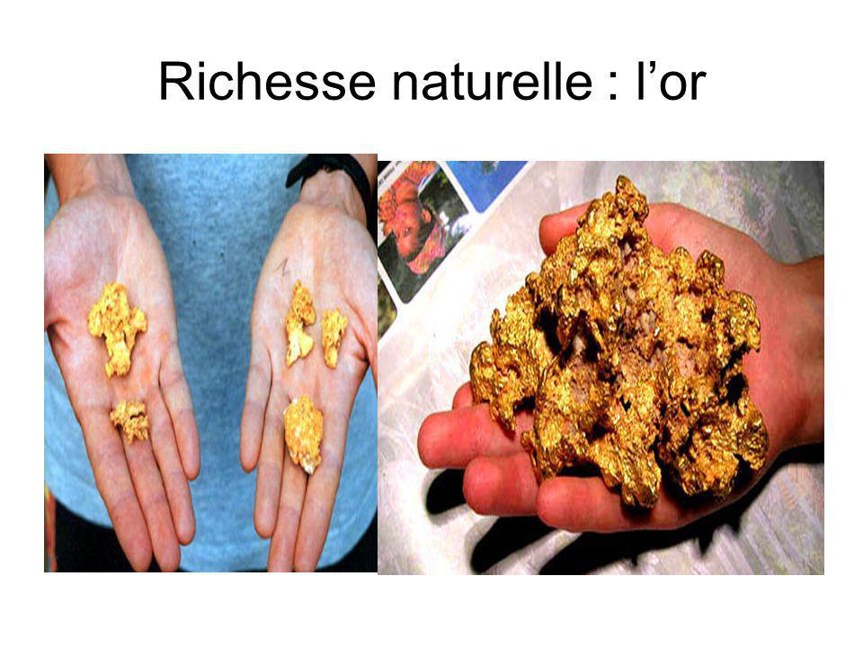 Richesse naturelle : l'or