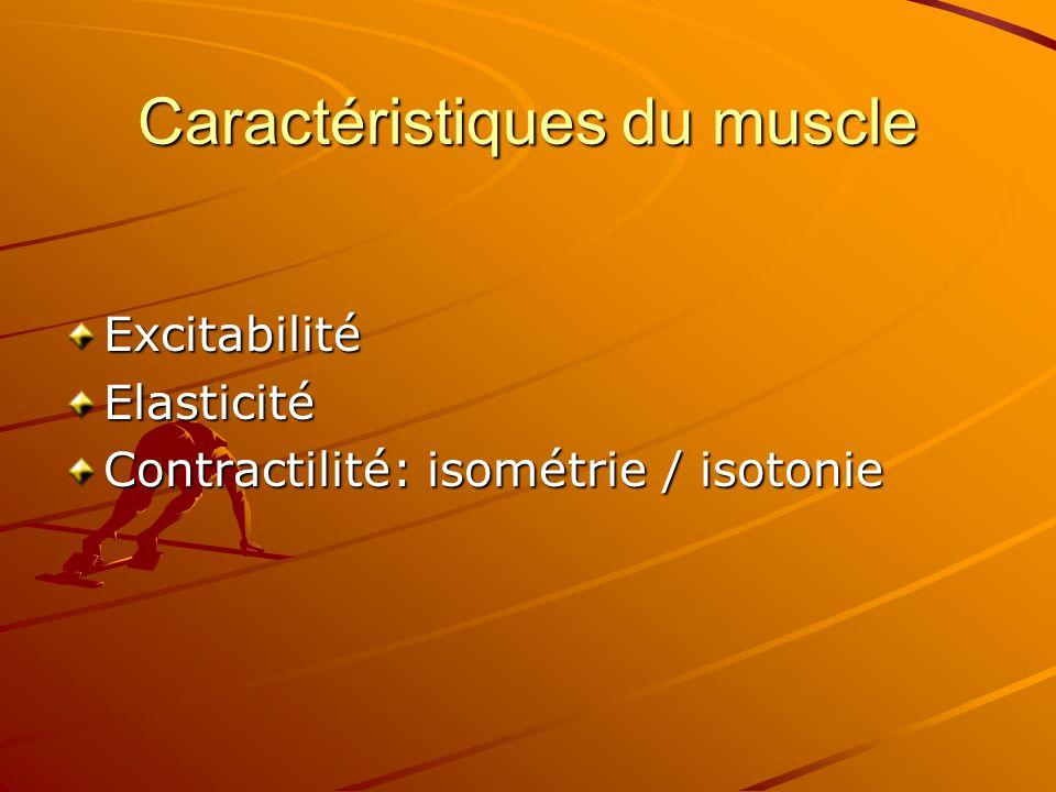 Caractéristiques du muscle
