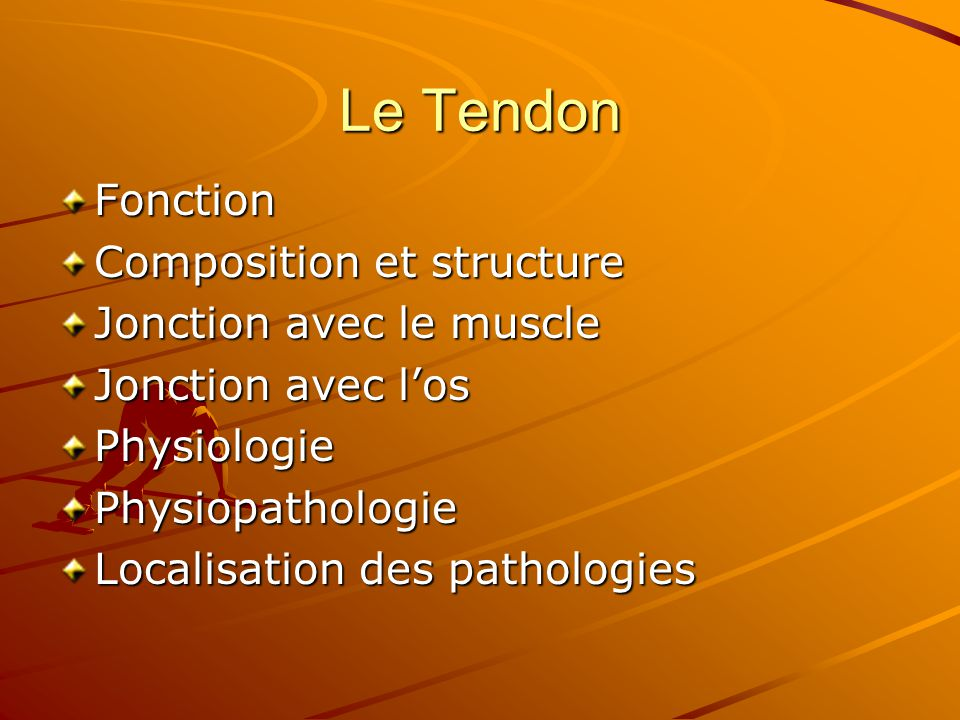 Le Tendon Fonction Composition et structure Jonction avec le muscle
