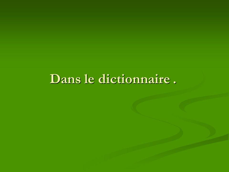 Dans le dictionnaire .