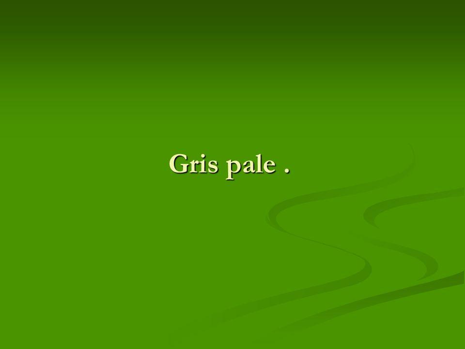 Gris pale .