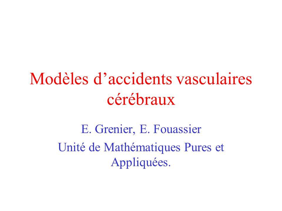 Modèles d'accidents vasculaires cérébraux