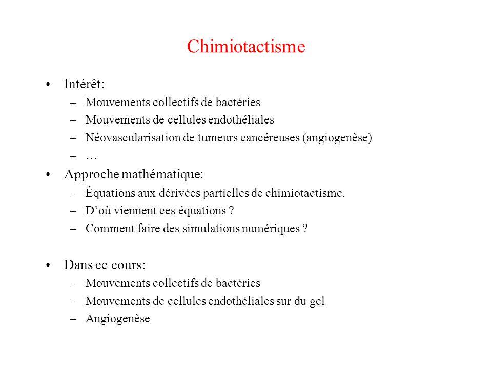 Chimiotactisme Intérêt: Approche mathématique: Dans ce cours: