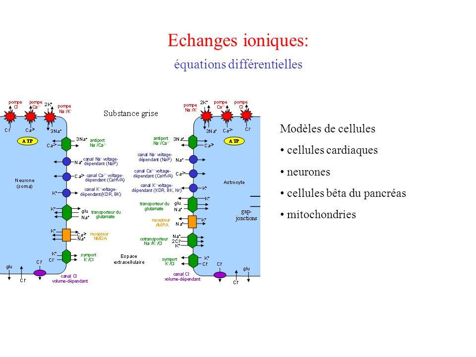 Echanges ioniques: équations différentielles