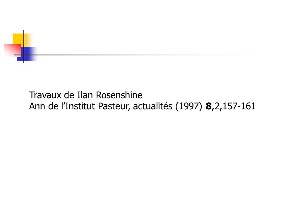 Travaux de Ilan Rosenshine