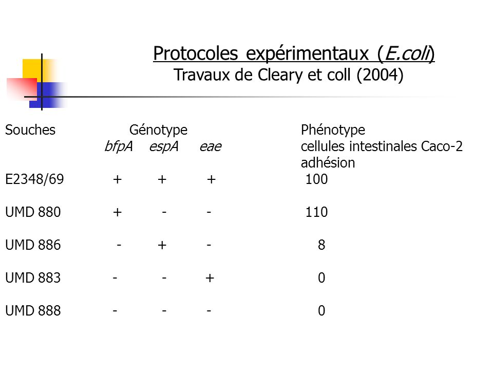 Protocoles expérimentaux (E.coli)