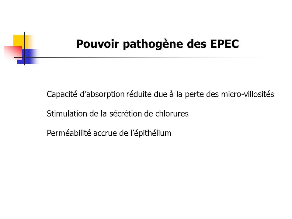 Pouvoir pathogène des EPEC