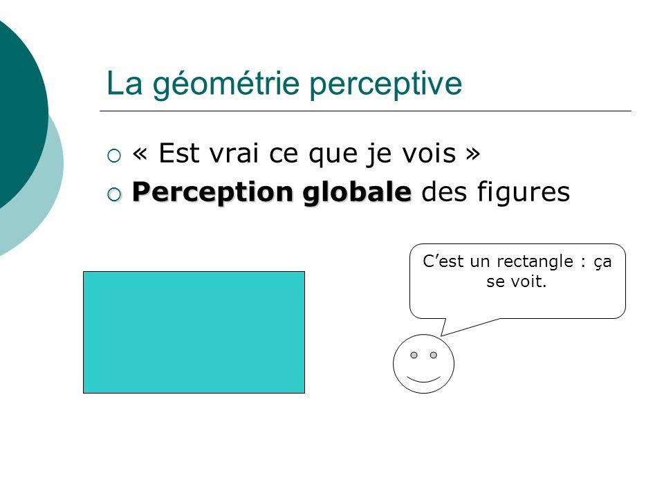 La géométrie perceptive