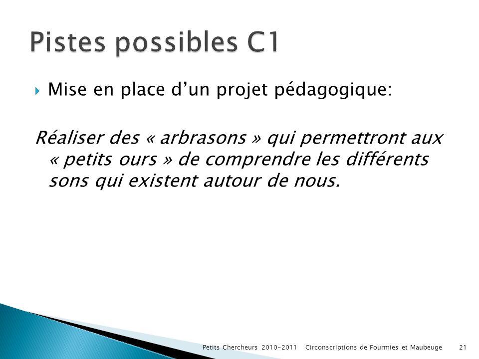 Pistes possibles C1 Mise en place d'un projet pédagogique: