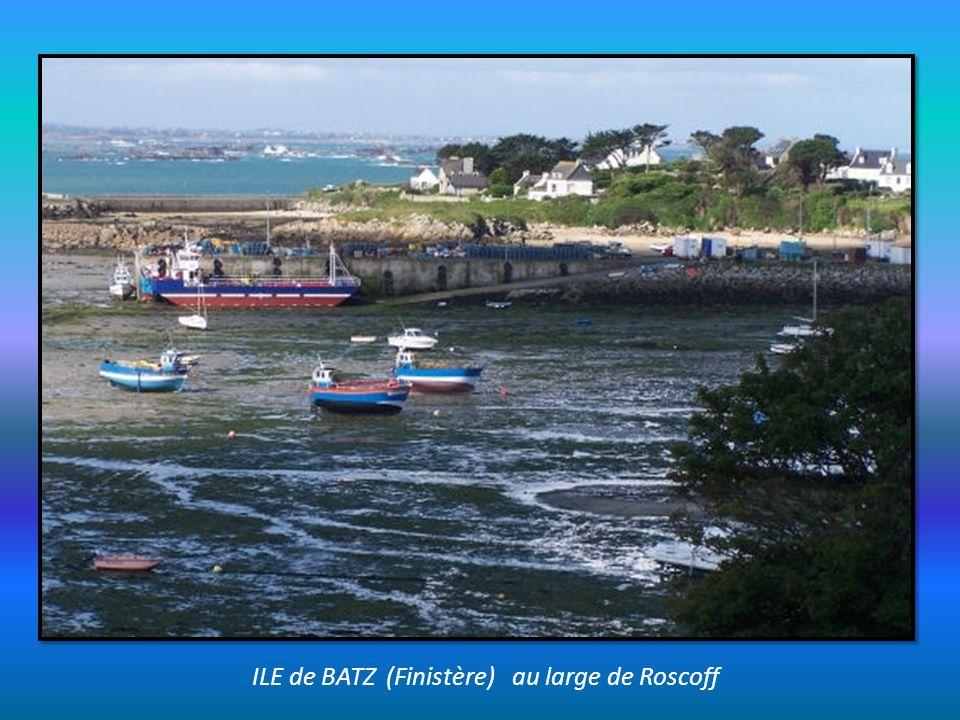 ILE de BATZ (Finistère) au large de Roscoff