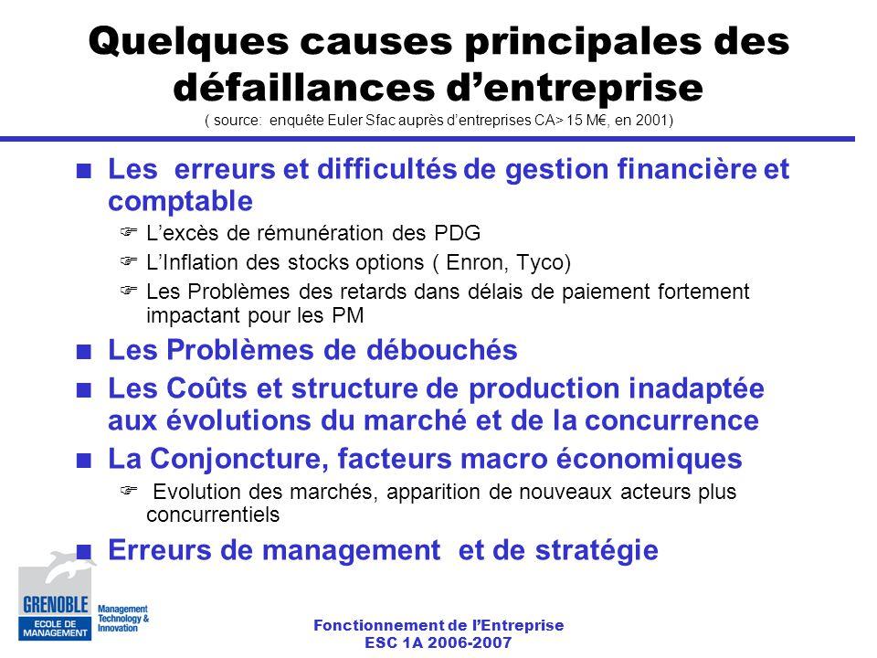 Quelques causes principales des défaillances d'entreprise ( source: enquête Euler Sfac auprès d'entreprises CA> 15 M€, en 2001)