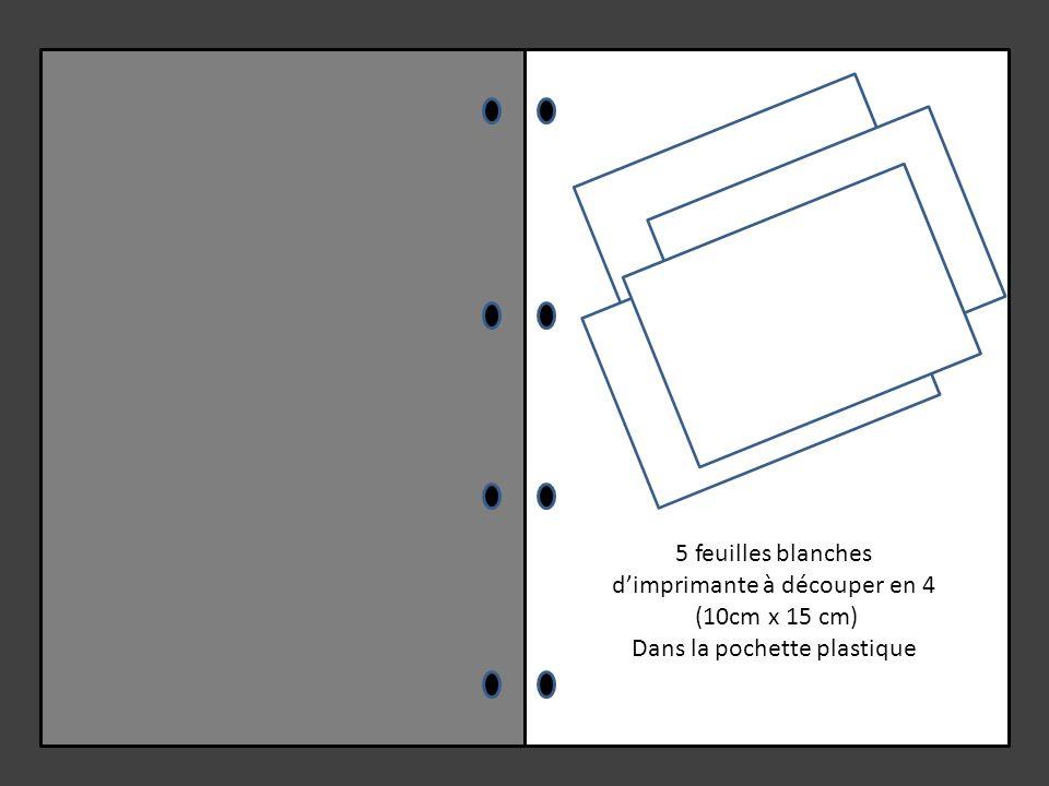 d'imprimante à découper en 4 (10cm x 15 cm) Dans la pochette plastique