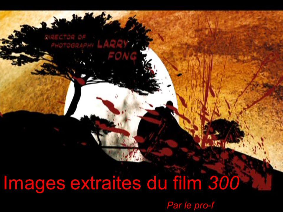 Images extraites du film 300