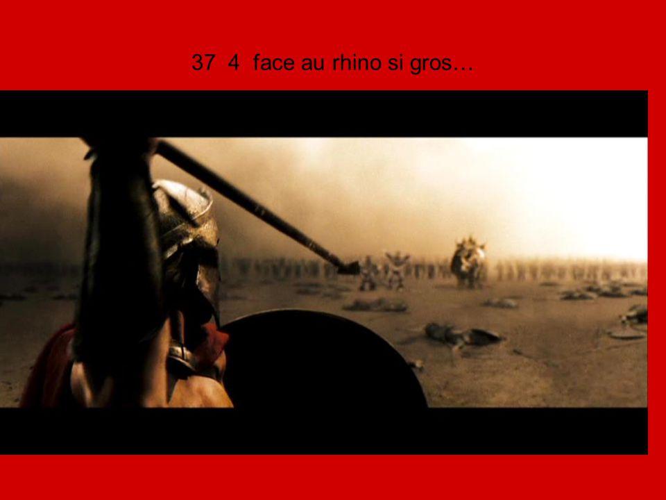 37 4 face au rhino si gros…