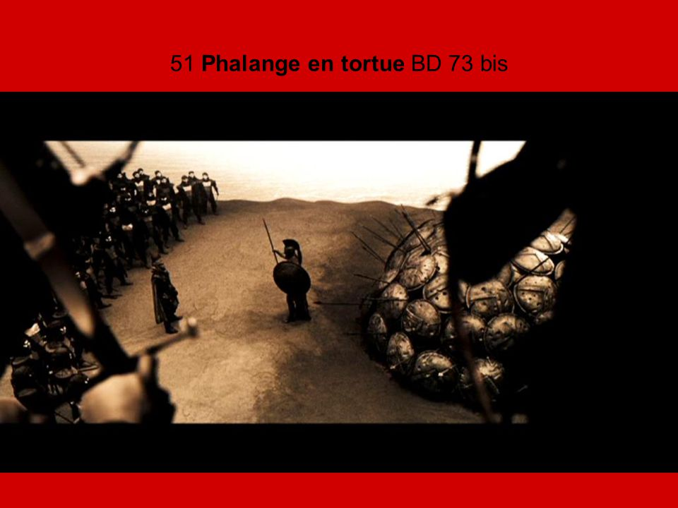 51 Phalange en tortue BD 73 bis