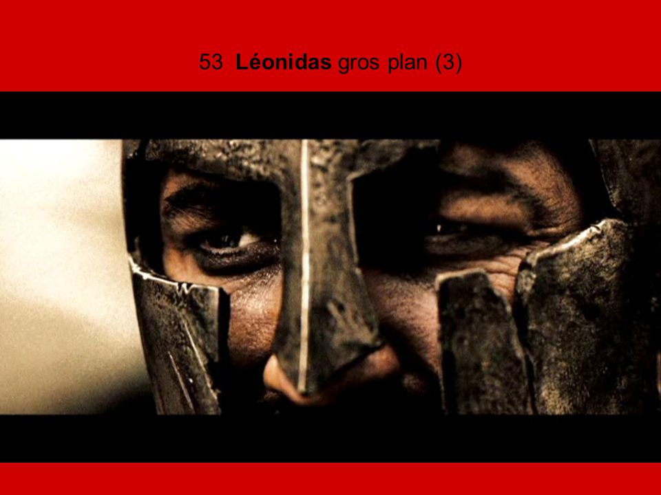 53 Léonidas gros plan (3)