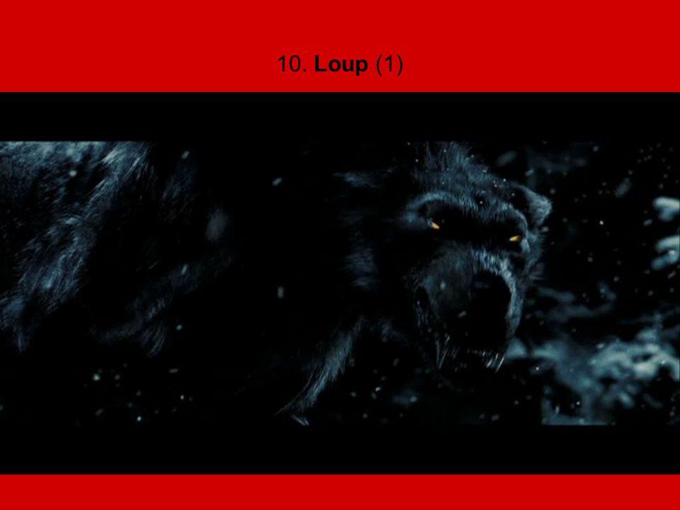 10. Loup (1)