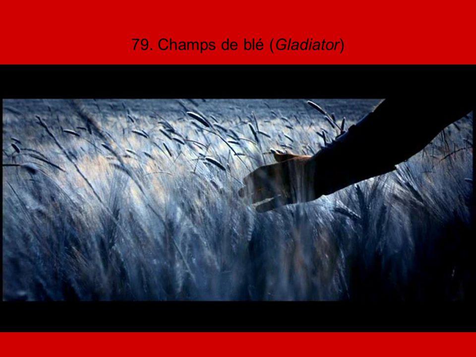 79. Champs de blé (Gladiator)