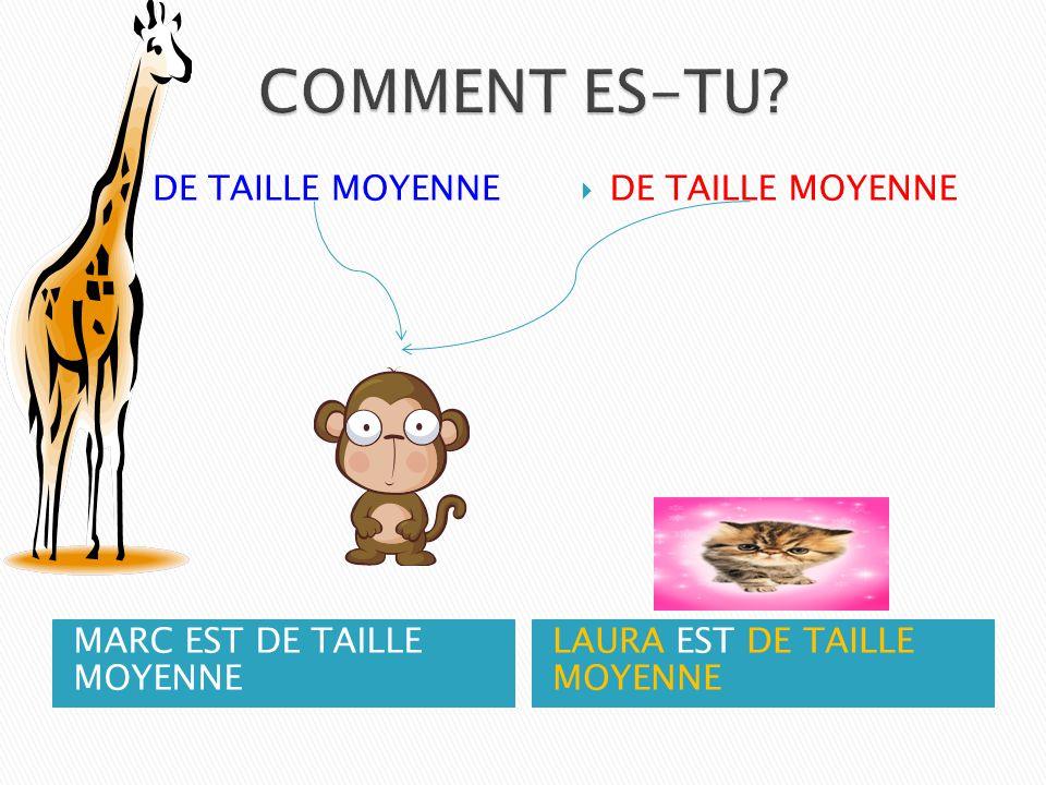 COMMENT ES-TU DE TAILLE MOYENNE DE TAILLE MOYENNE