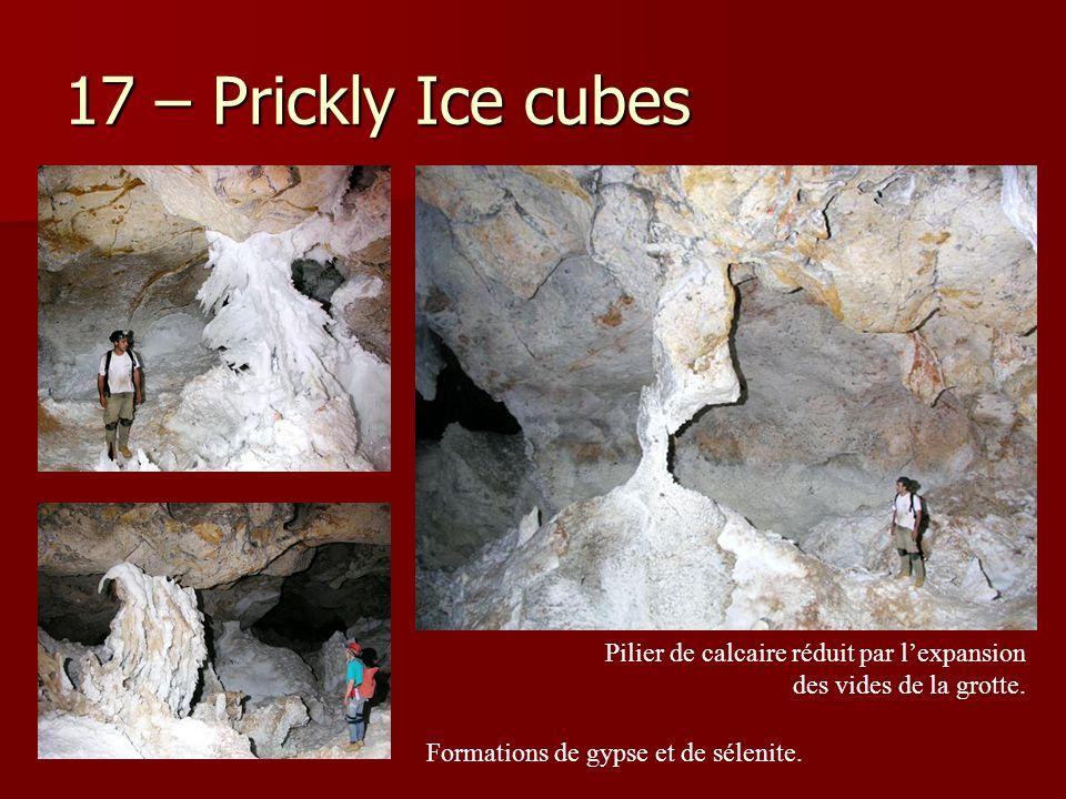 17 – Prickly Ice cubes Pilier de calcaire réduit par l'expansion des vides de la grotte.
