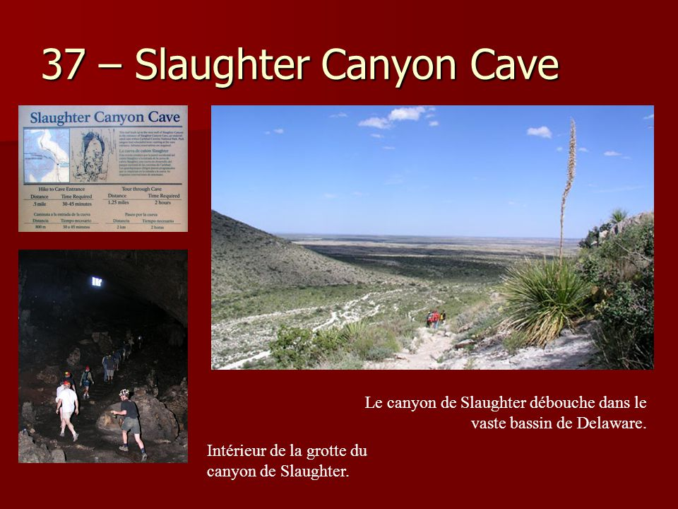 37 – Slaughter Canyon Cave