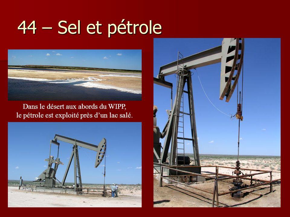 44 – Sel et pétrole Dans le désert aux abords du WIPP,