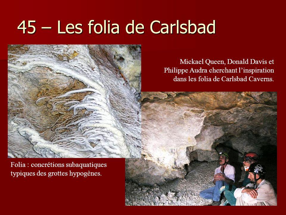 45 – Les folia de Carlsbad Mickael Queen, Donald Davis et Philippe Audra cherchant l'inspiration dans les folia de Carlsbad Caverns.