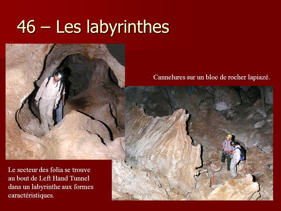 46 – Les labyrinthes Cannelures sur un bloc de rocher lapiazé.