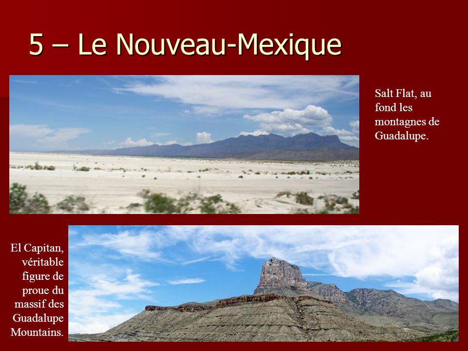 5 – Le Nouveau-Mexique Salt Flat, au fond les montagnes de Guadalupe.