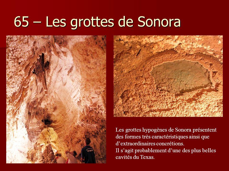 65 – Les grottes de Sonora Les grottes hypogènes de Sonora présentent des formes très caractéristiques ainsi que d'extraordinaires concrétions.