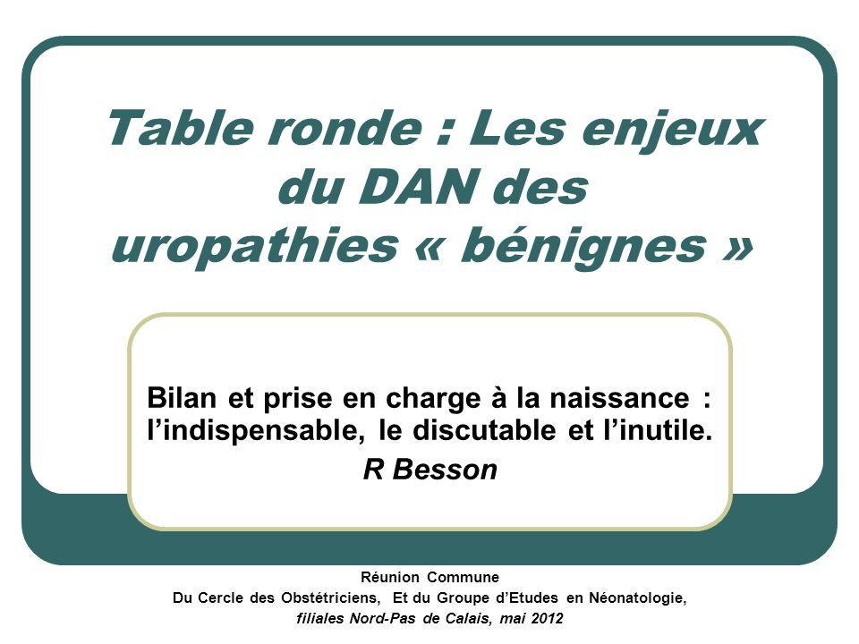 Table ronde : Les enjeux du DAN des uropathies « bénignes »