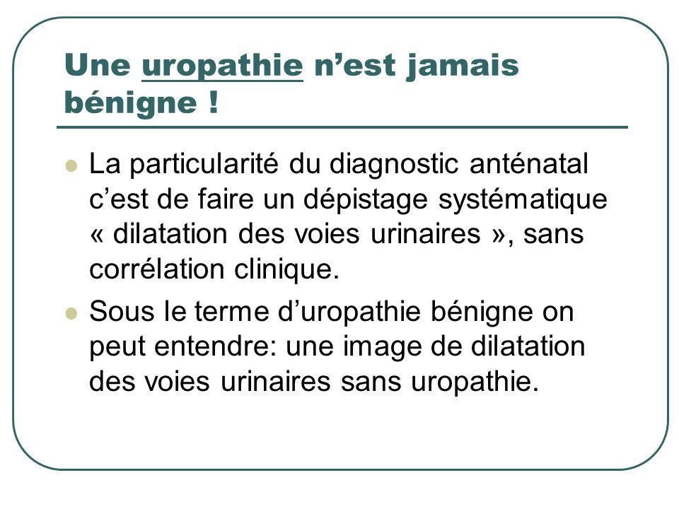 Une uropathie n'est jamais bénigne !
